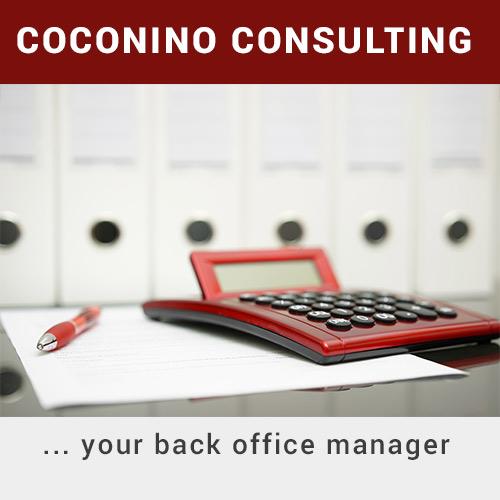 Coconino Consulting