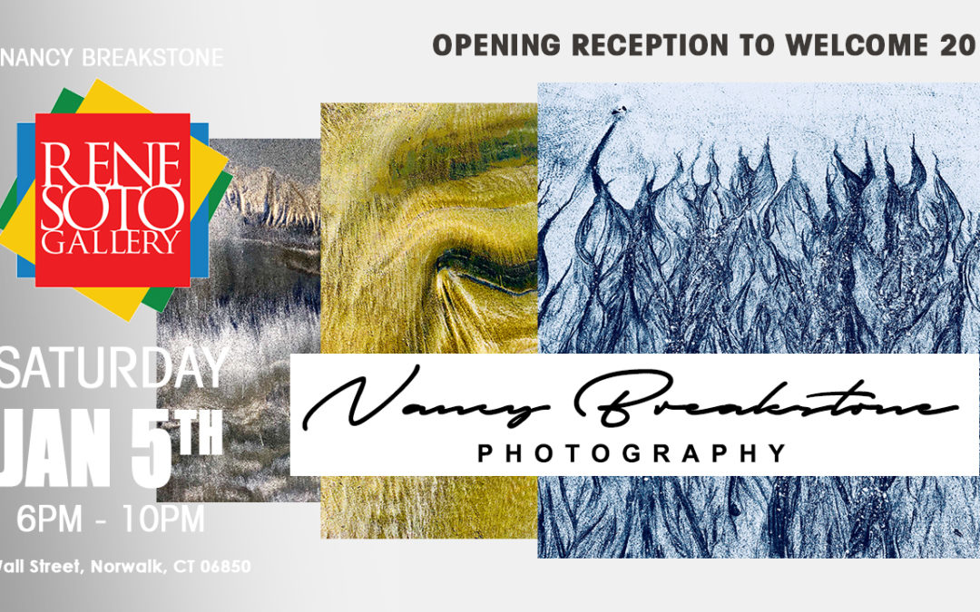 January Exhibit at Rene Soto Gallery